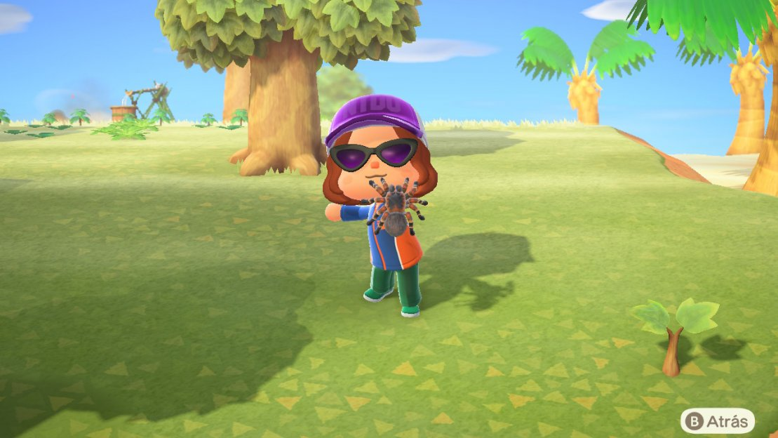 Tarántulas en Animal Crossing: New Horizons