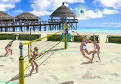 beach-spikers-%289%29.jpg