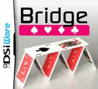 Bridge Nintendo DS