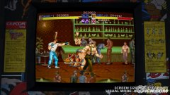 final-fight-double-impact-unveiled-20091124085748582.jpg
