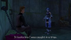 screenshot_psp_kingdom_hearts_birth_by_sleep113.jpg