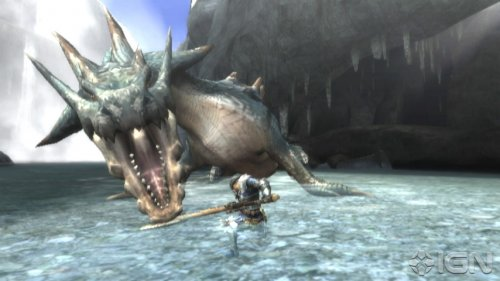 monster-hunter-tri-20100224113754823.jpg