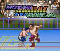 Natsume Championship Wrestling Wii