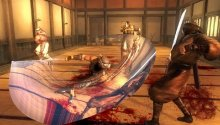 Ninja Gaiden Sigma Plus y Dynasty Warriors Next llegaran en febrero para Playstation Vita