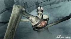 resident-evil-the-darkside-chronicles-20090702083155741.jpg