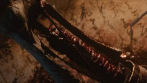 From Software anuncia Shadows Die Twice, ¿continuación de Bloodborne?