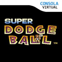 Super Dodge Ball Wii