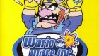 WarioWare, Inc.: Mega Party Games!