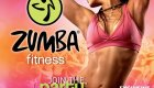 Zumba Fitness: Enjoy the Party