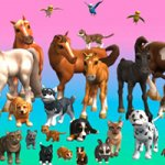 My Vet Practice 3D - In the Country