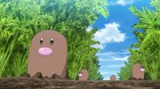 Hands-On Agriculture Studies! Where is Diglett?!