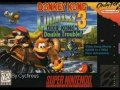 Donkey Kong Country 3 OST Water World