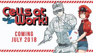 Tráiler del anime de Cells at Work